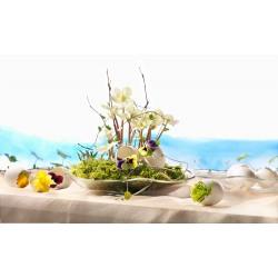 Farfurie desert sticla Bormioli Nettuno 19 cm