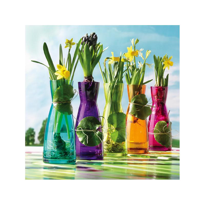 Carafa sticla diverse culori Bormioli Ypsilon 500 ml