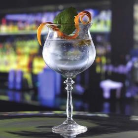 Pahar gin Libbey Vintage 1924 620 ml
